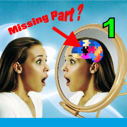 INFO -  What Are You Missing 1 - Notice something is missing